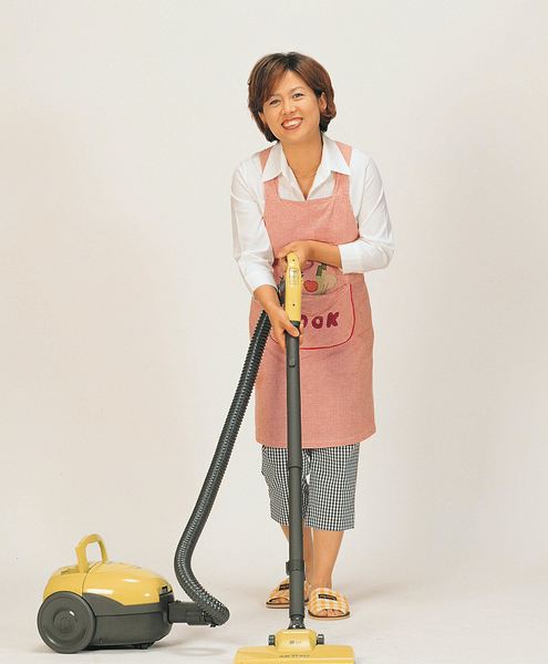 cleaning services for homeowners in North Reading MA